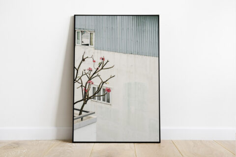Print of a minimal wall with a frangipani tree in the foreground