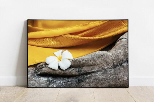 Print of a white plumeria frangipani flower in Buddha hand