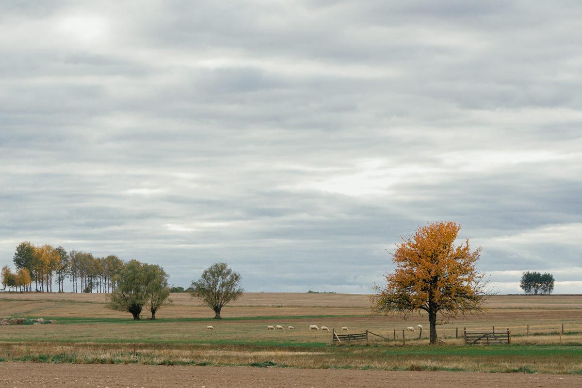 Landscapes of Eastern Poland