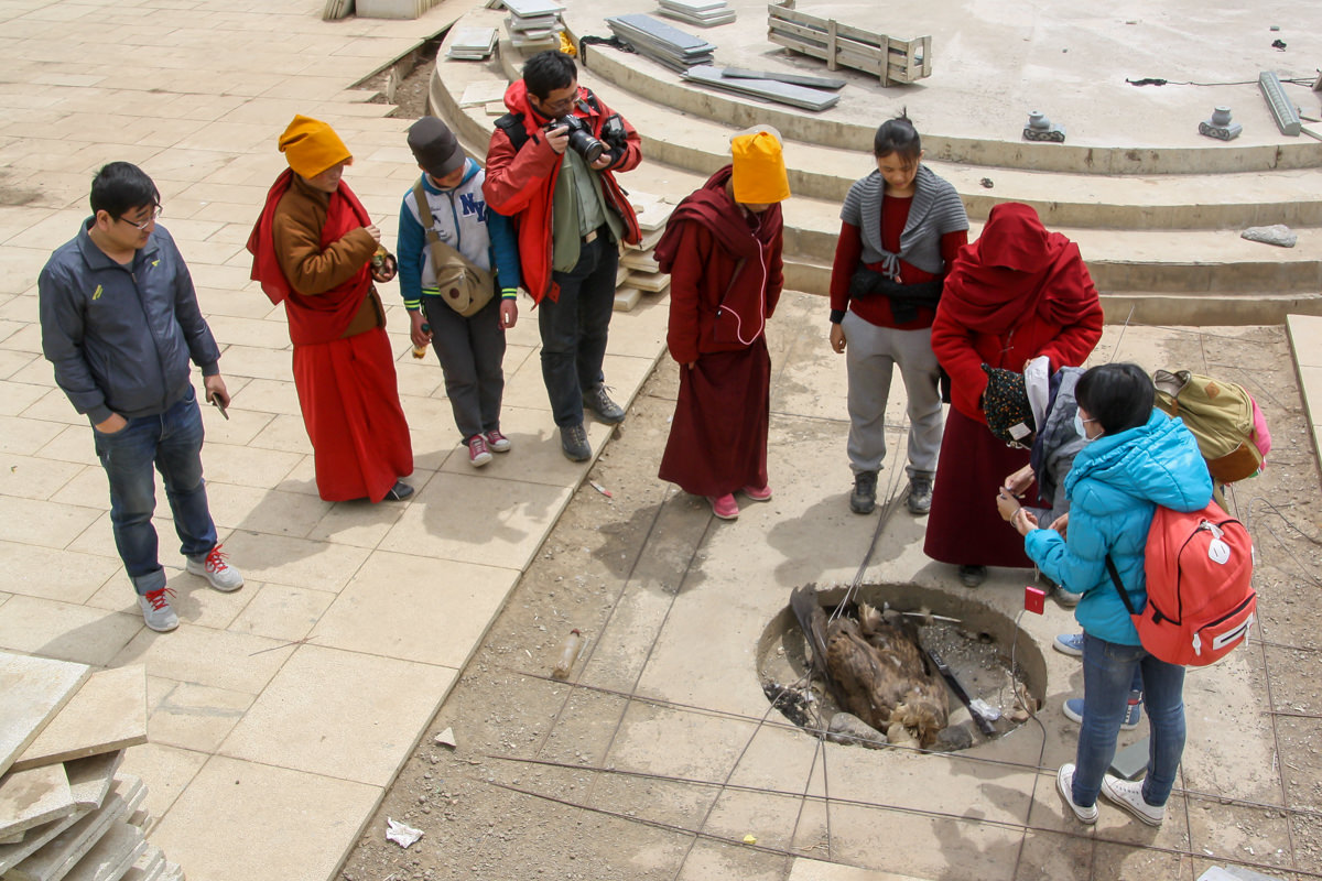 Chinese tourists and monks observing a death vulture before the Sky Burial, in Larung Gar